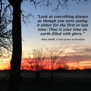 Sunrise photo by Louellen S. Coker with quote from novel.